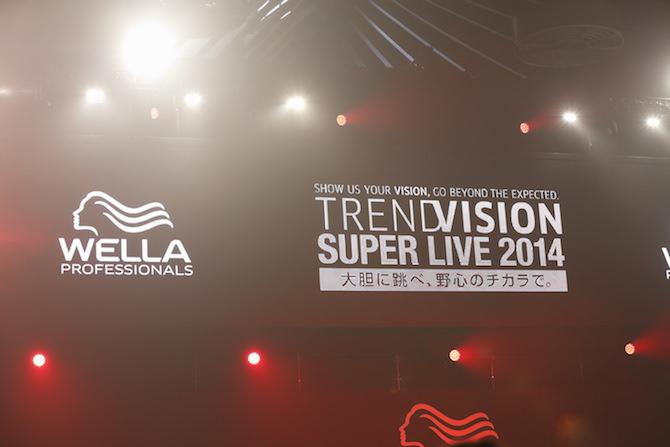 WELLA TREND VISION award 2014
